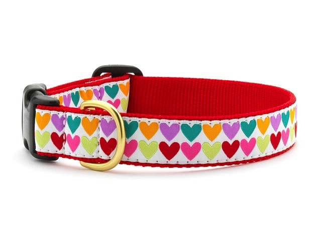 Up Country Up Country Pop Hearts Dog Collar - Medium Narrow Product Image
