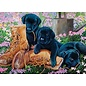 Cobble Hill Trouble in the Garden 500 Piece Puzzle