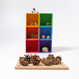 Grimms Small Sorting Helper by Grimms