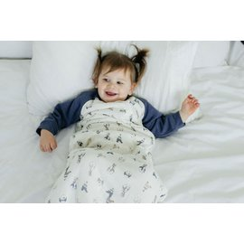 Nest Designs Circus Puffin Print Raglan Bamboo Long Sleeve 2.5 Tog Cozy Sleep Bag by Nest Designs