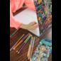 Eeboo Double Sided Coloured Pencils (Tree of Life) 12 Pk
