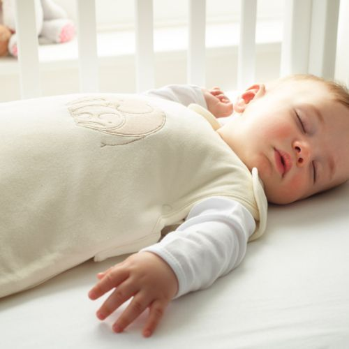 Grobag Grobag Sleep Sack 2.5 tog (Fall/Winter)