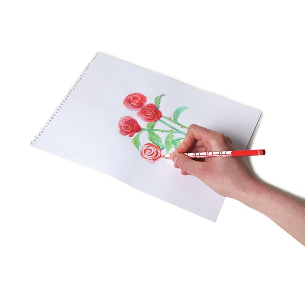 Eeboo Watercolor Pencils in Tin (24-Pack) by Eeboo