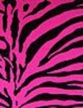 Pink Zebra Stretch Fabric