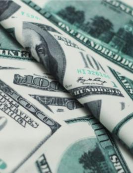 Rex Fabrics MONEY FABRIC