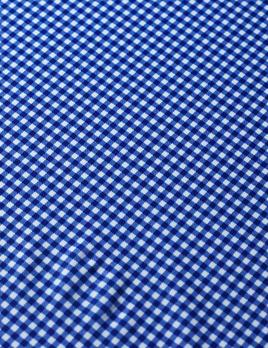 Rex Fabrics Gingham Small Check Royal/White