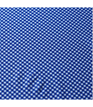 Gingham Small Check Royal/White