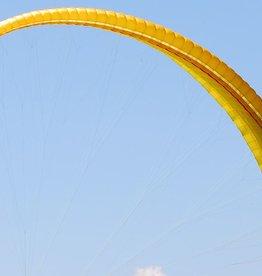 Nova Pharaon - DHV 1 - Medium (85-105 kg) - 2001 (Yellow) - Used