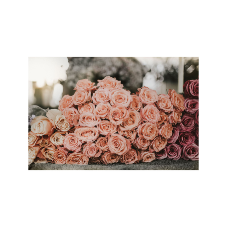 Flower Market No 2 Print, Paris 8x10