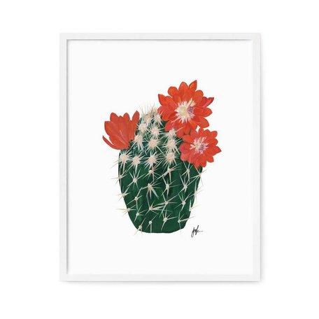 "Flowering Cacti IV Print -8x10"""