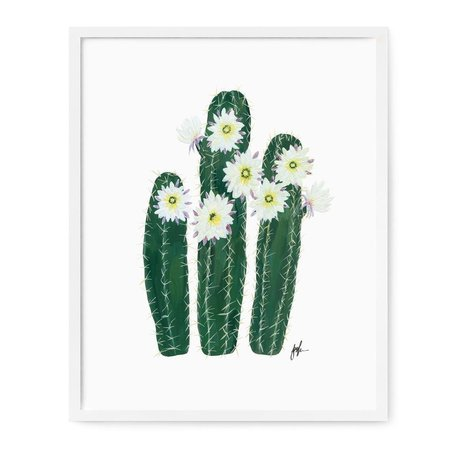 Flowering Cacti V Print -8x10""