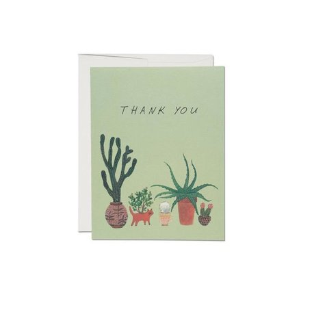 Green Cactus Thank You Box/8