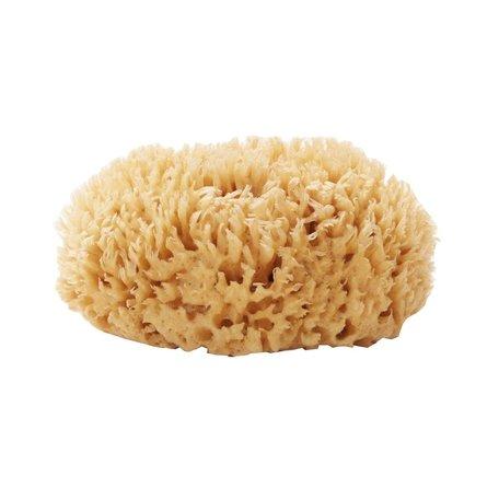 """5-6"""" Sea Wool Sponge"""