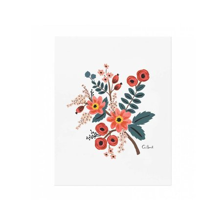 Coral Botanical Print 8x10