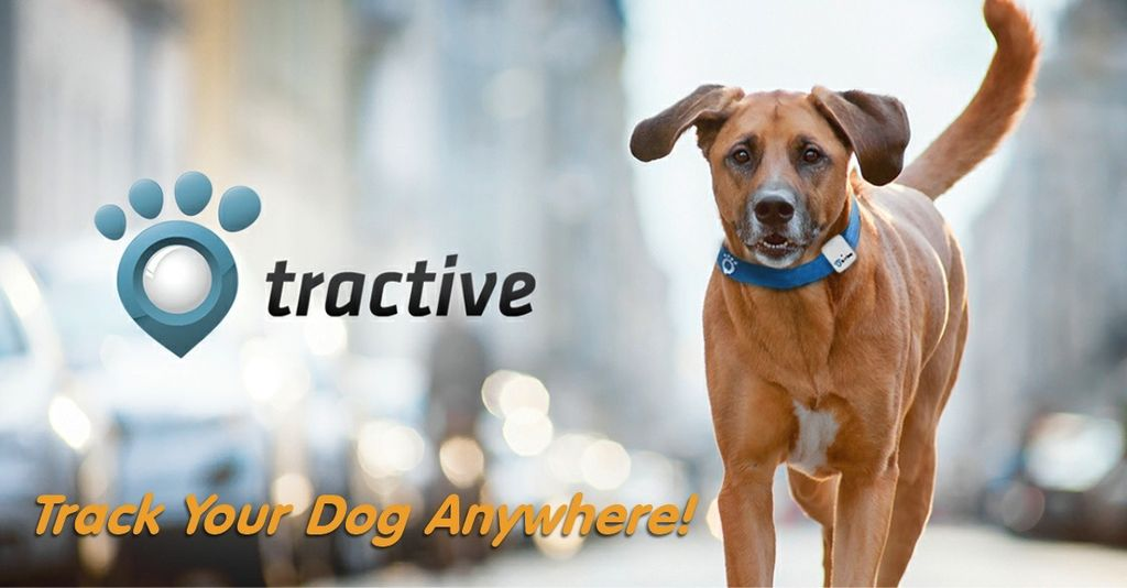 Tractive Tractive GPS Pet Tracker