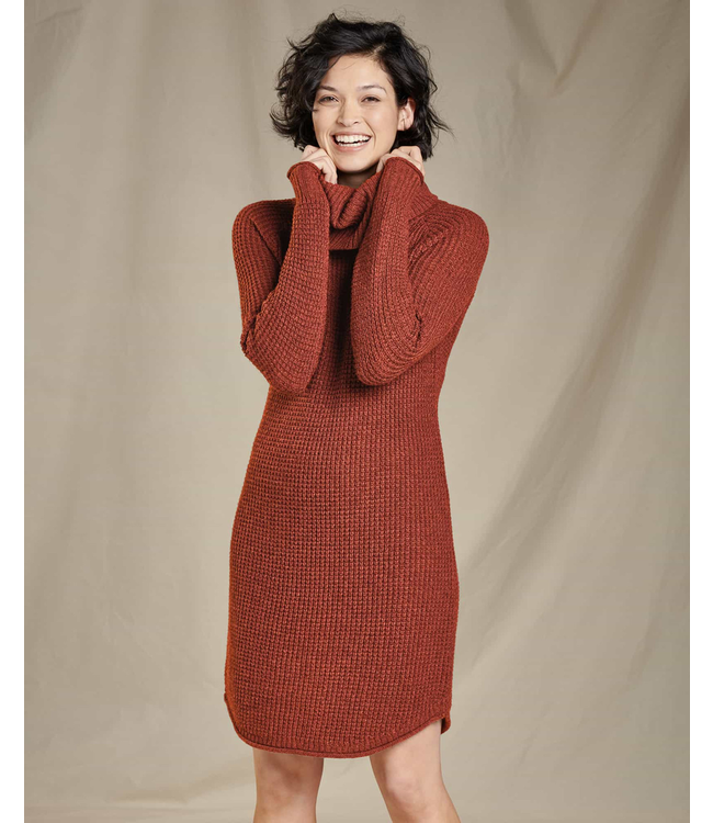 Toad & Co. W's Chelsea Turtleneck Dress