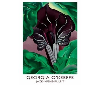 POMEGRANATE BOXED NOTECARDS JACK IN THE PULPIT