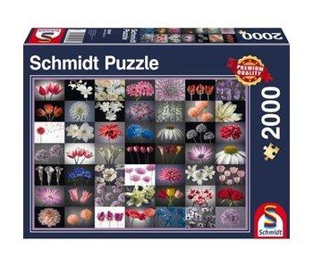 SCHMIDT PUZZLE 2000: FLORAL GREETING