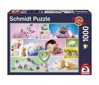 SCHMIDT PUZZLE 1000: CUDDLY CATS