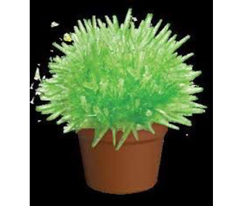 Schylling Crystal Cactus