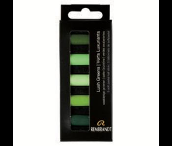 REMBRANDT SOFT PASTEL Lush Greens 5 Half Stick
