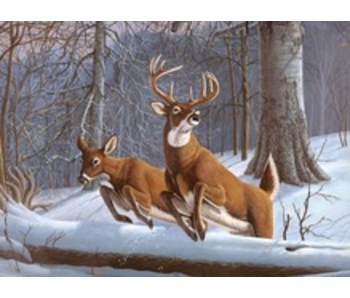 ROYAL & LANGNICKEL PAINT BY NUMBER WHITE TAIL DEER