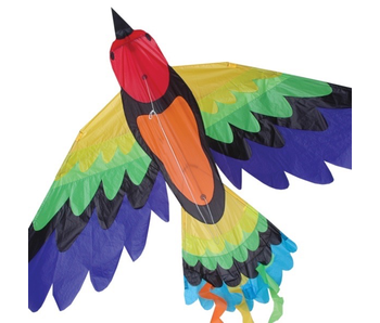 PREMIER KITES RAINBOW BIRD KITE