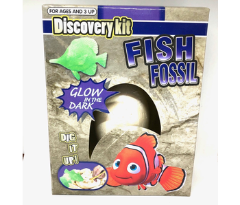 DISCOVERY KIT FISH FOSSIL