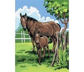 PAINT BY NUMBERS HORSES MARE AND FOAL