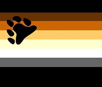 BEAR PRIDE FLAG FRIDGE MAGNET