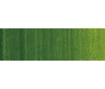 WINSOR NEWTON 37ML OIL SAP GREEN