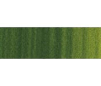 WINTON OIL 200ML SAP GREEN