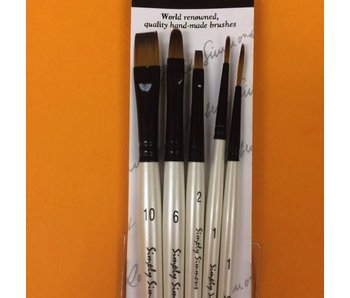SIMPLY SIMMONS EVERYTHING BRUSH SET