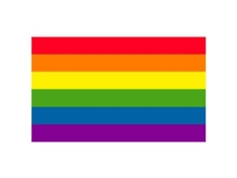 "GAY PRIDE FLAG 12""X18"" SMALL"