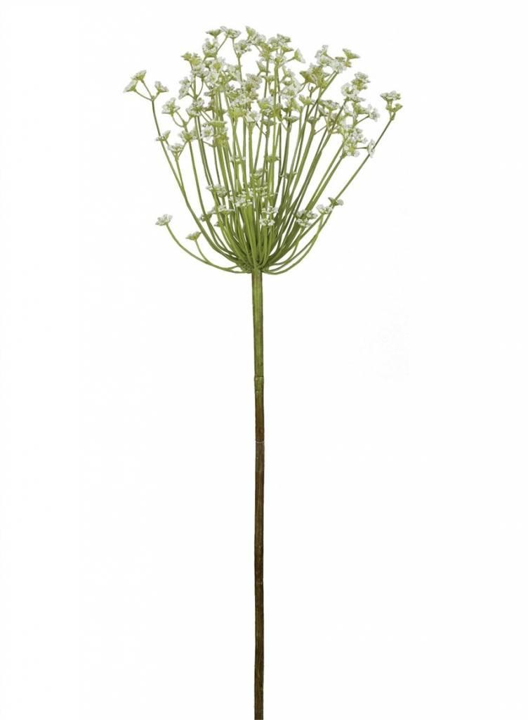 """38"""" Allium White Stem"""