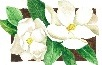 Magnolia's Scrapbook Shop, LLC