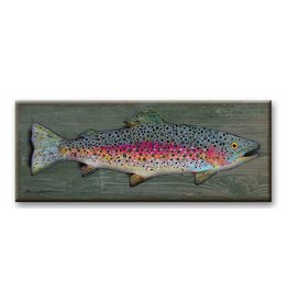 Wood Back with metal curved Rainbow Trout  17x44