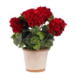 17 Inch Red Geranium in Ceramic Pot