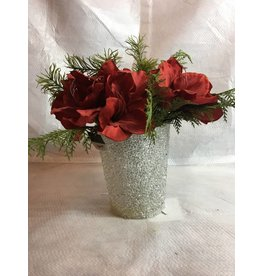 "14"" Red Amaryllis in Clear Bead Pot"