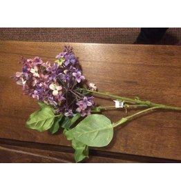 """Lilac Spray 30"""""""
