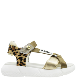 Elena Iachi ElenaIachi Cheetah Hair Calf With Gold Sandal  2447