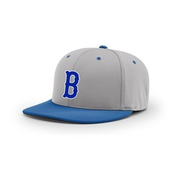Burbank Baseball Richardson PTS20 Combination