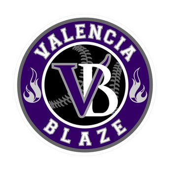 Blaze Baseball Academy Window Decal