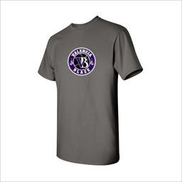 Blaze Baseball Academy Gildan Tshirt -5000
