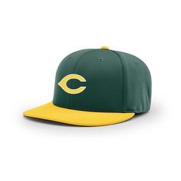 CHS Baseball Richardson PTS20 Combination