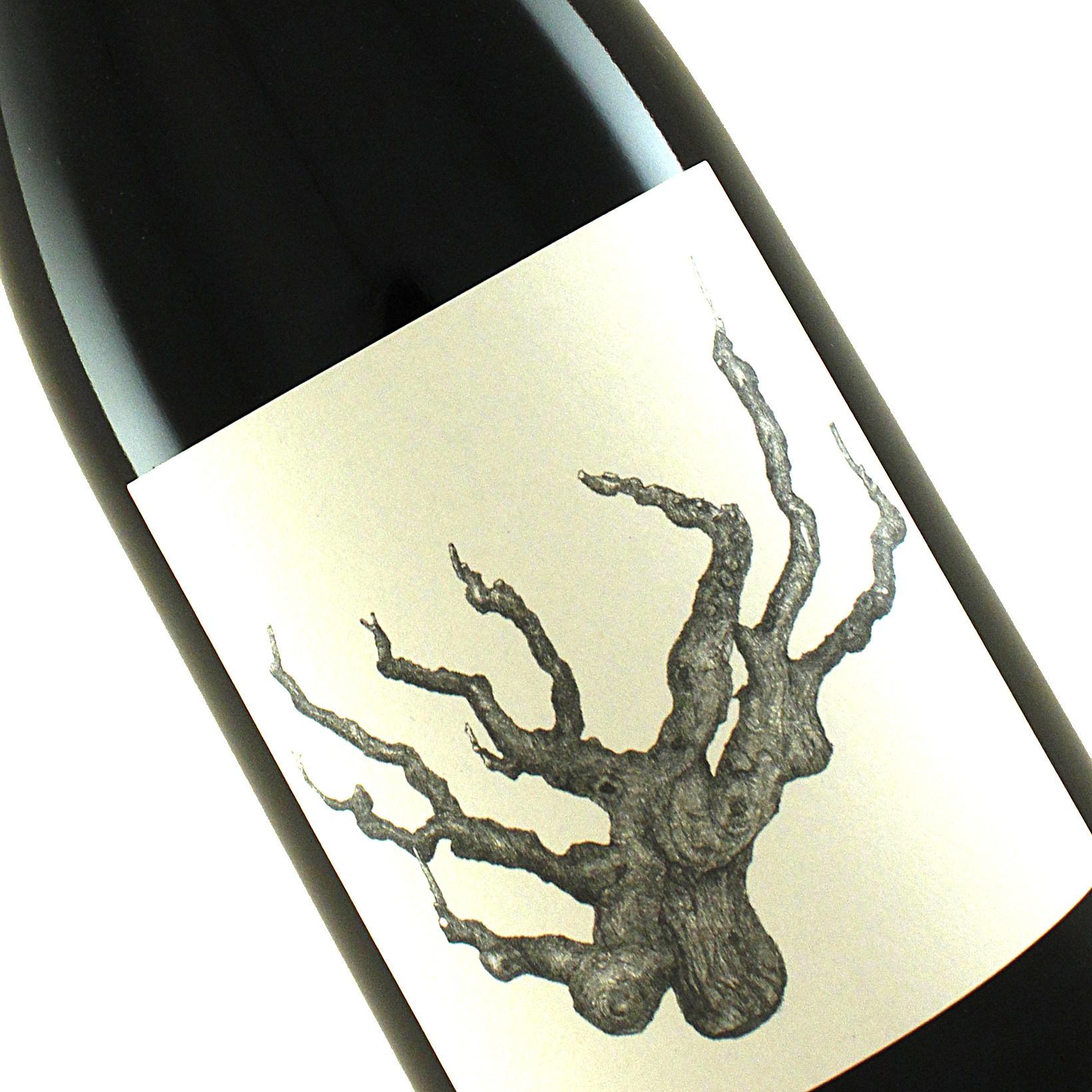 Broc Cellars 2017 Old Vine Carignan Alexander Valley