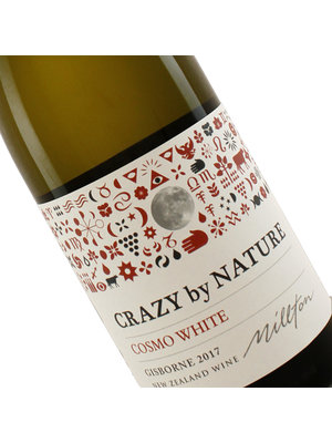 Crazy by Nature 2017 Cosmo White Gisborne, New Zealand
