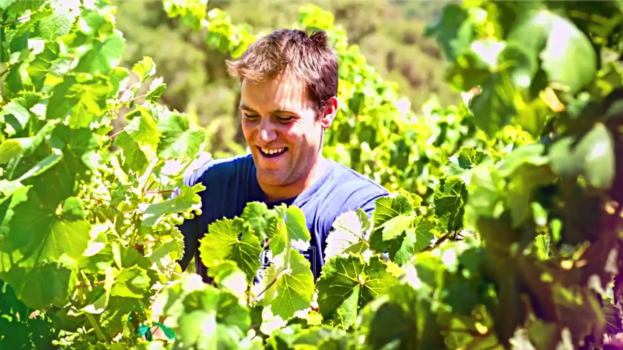 A Young Winemaker on a Mission