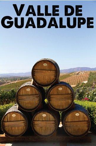 The New Wine Craze: Valle de Guadalupe, Baja, Mexico