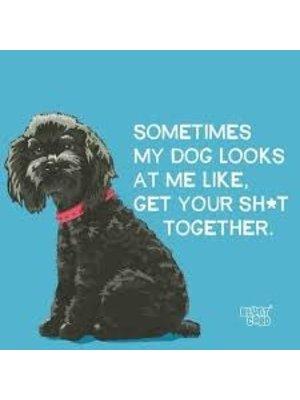 Napkin - PPD Sometimes My Dog Looks...